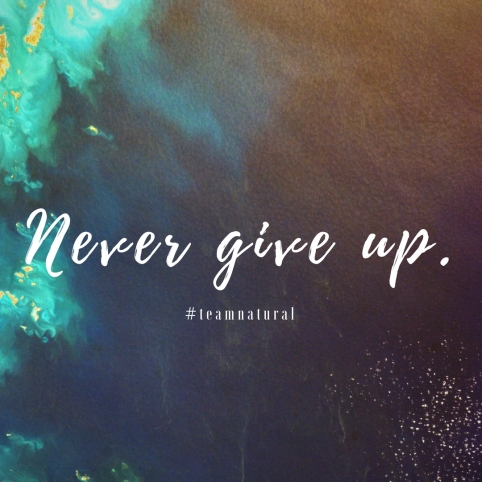 Never Give Up(1).jpg